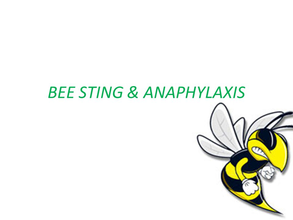 BEE STING & ANAPHYLAXIS