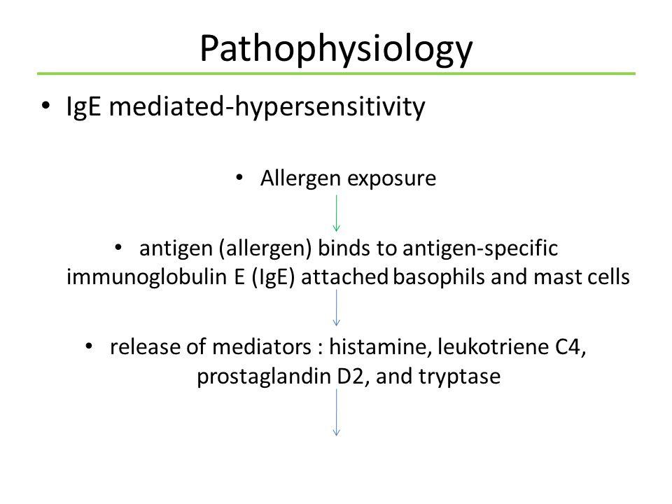 Pathophysiology IgE mediated-hypersensitivity Allergen exposure
