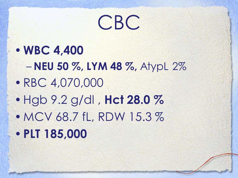 CBC WBC 4,400 RBC 4,070,000 Hgb 9.2 g/dl , Hct 28.0 %