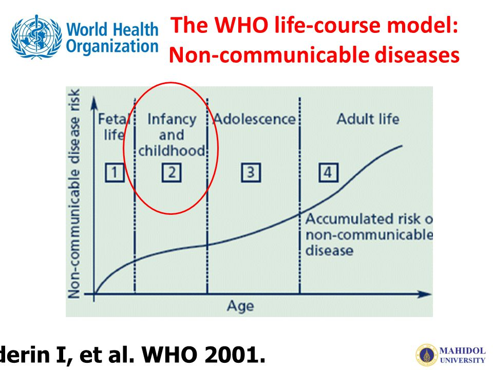 The WHO life-course model: Non-communicable diseases