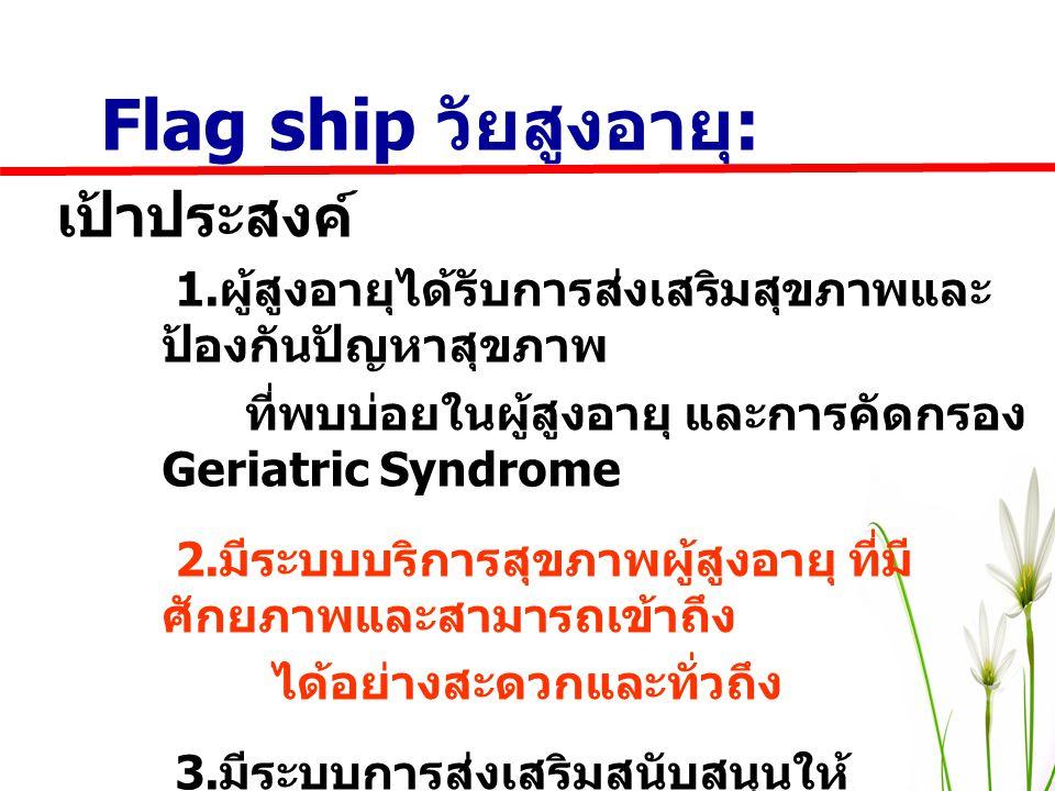 Flag ship วัยสูงอายุ: เป้าประสงค์