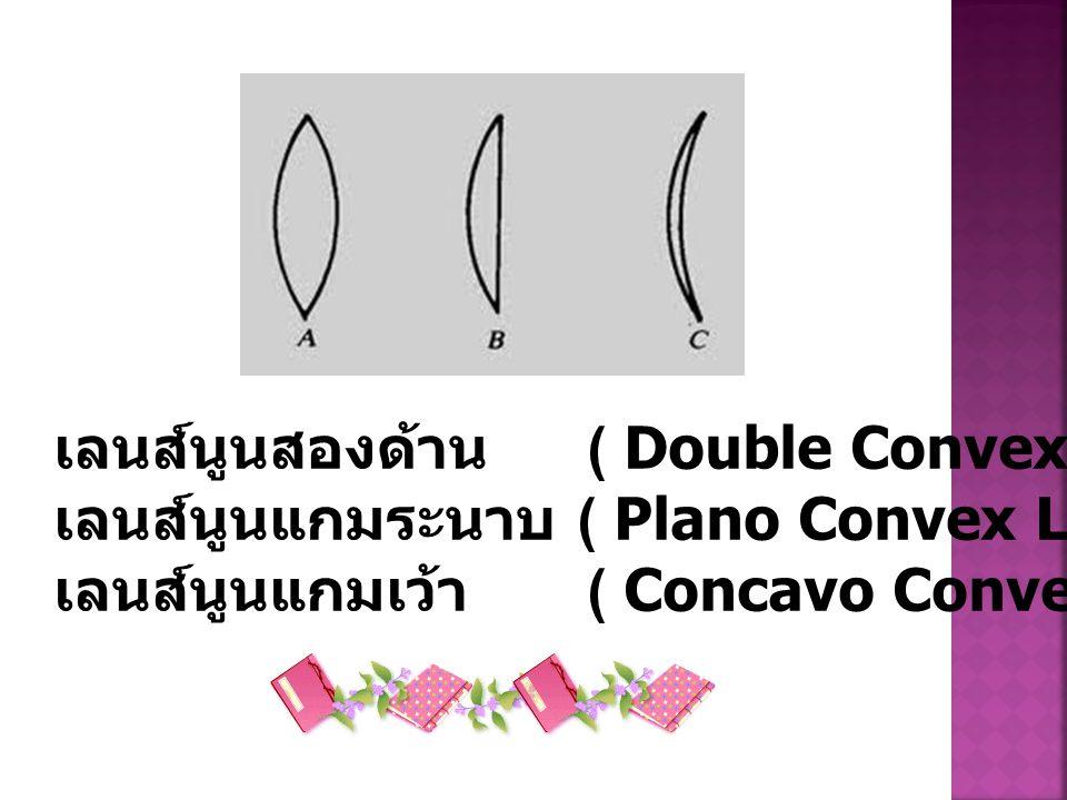 เลนส์นูนสองด้าน. ( Double Convex Lens)