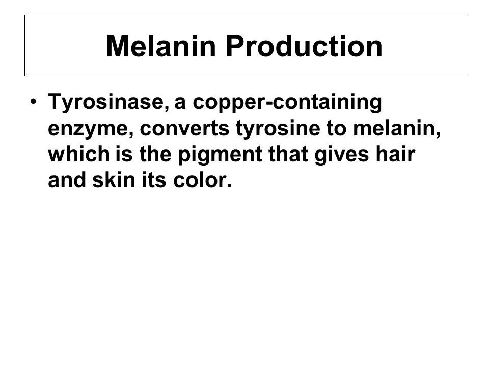 Melanin Production Tyrosinase, a copper-containing enzyme, converts tyrosine to melanin, which is the pigment that gives hair and skin its color.