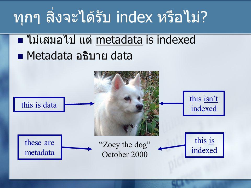 ทุกๆ สิ่งจะได้รับ index หรือไม่
