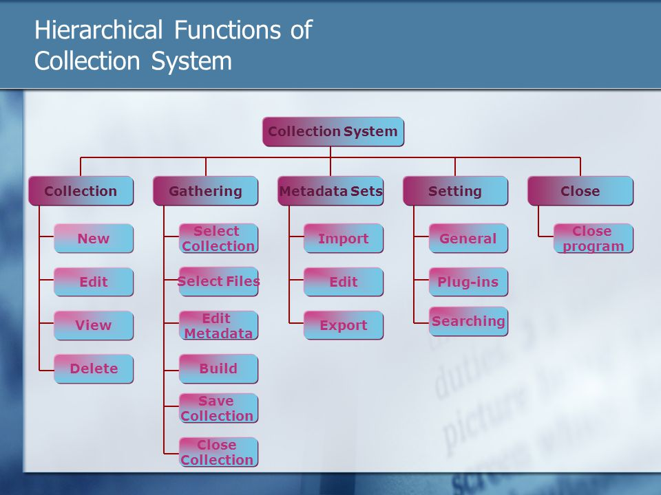 Hierarchical Functions of Collection System