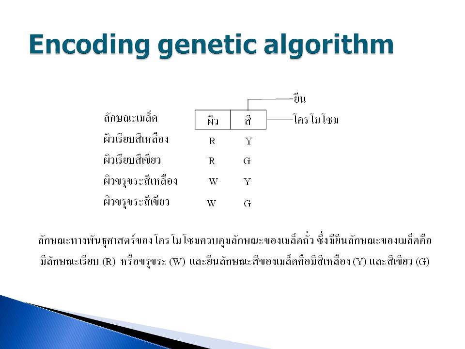 Encoding genetic algorithm