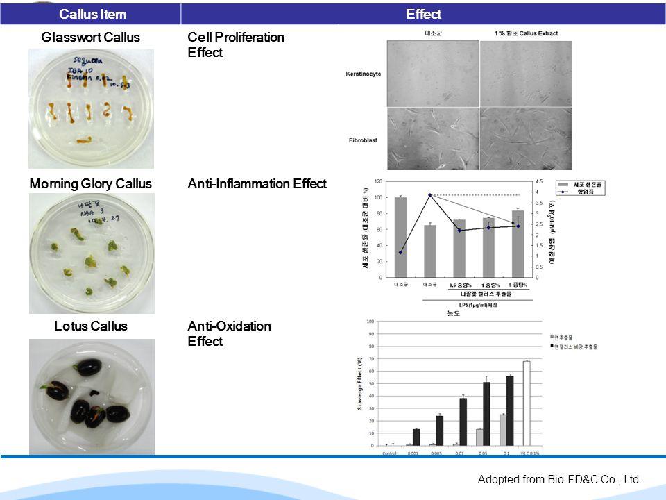 Callus Item Effect Glasswort Callus Morning Glory Callus Lotus Callus