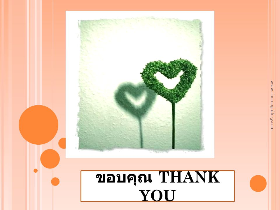 www.themegallery.com ขอบคุณ THANK YOU