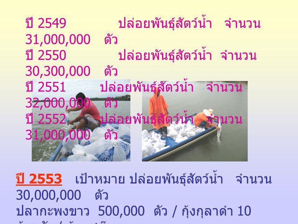 ปี 2549 ปล่อยพันธุ์สัตว์น้ำ จำนวน 31,000,000 ตัว