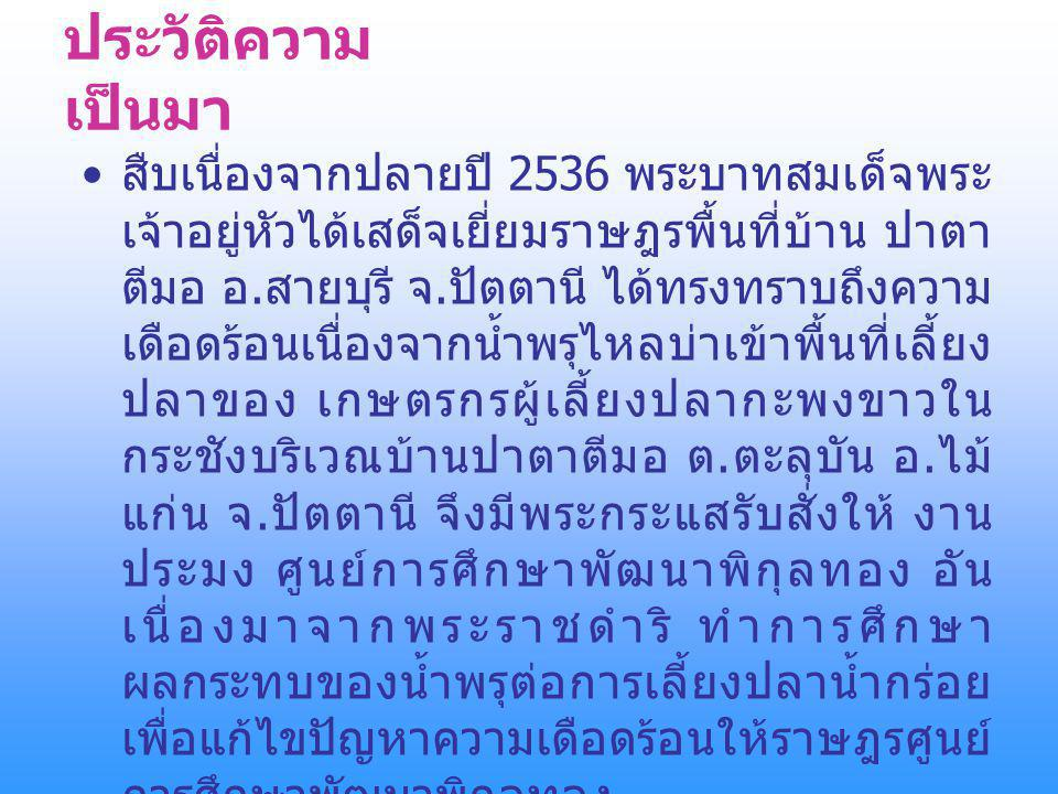 ประวัติความเป็นมา