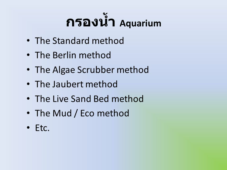 กรองน้ำ Aquarium The Standard method The Berlin method