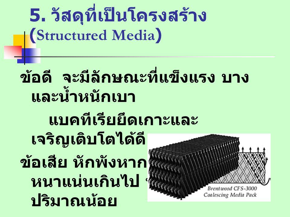 5. วัสดุที่เป็นโครงสร้าง (Structured Media)