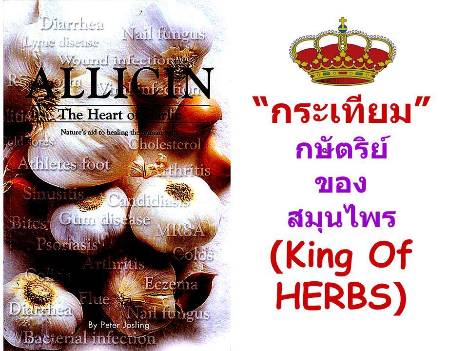 กระเทียม กษัตริย์ ของ สมุนไพร (King Of HERBS)