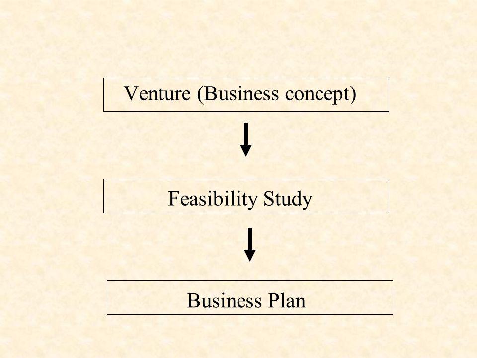 Venture (Business concept)