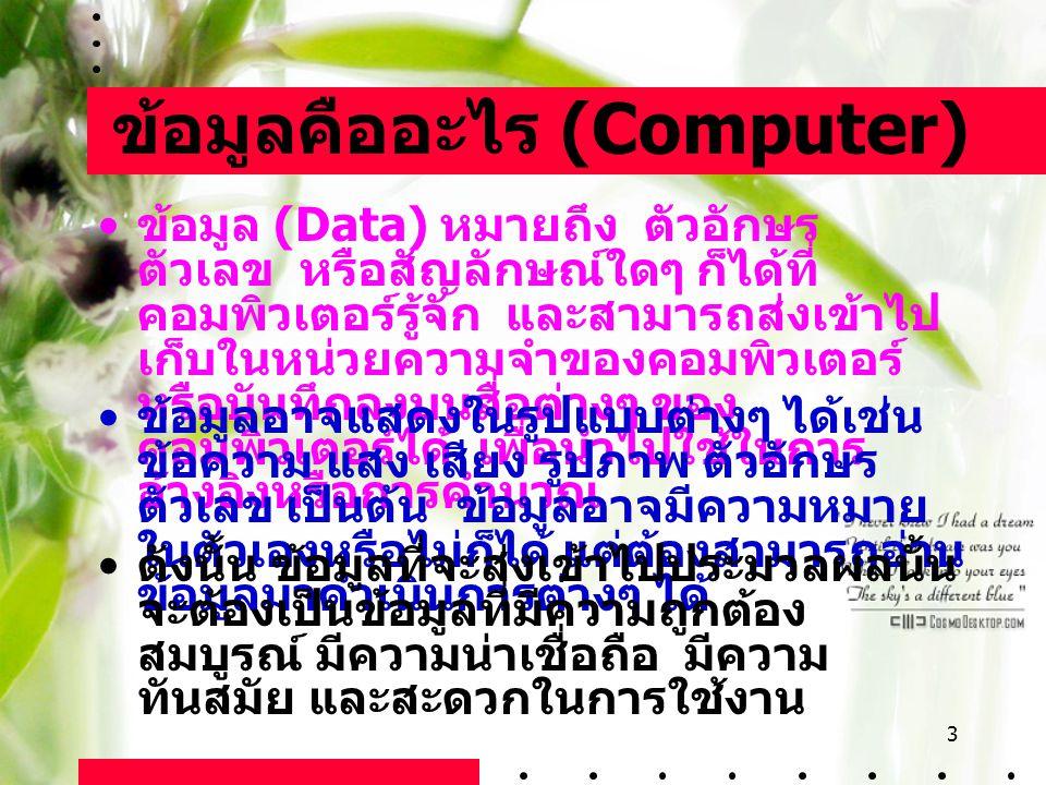 ข้อมูลคืออะไร (Computer)