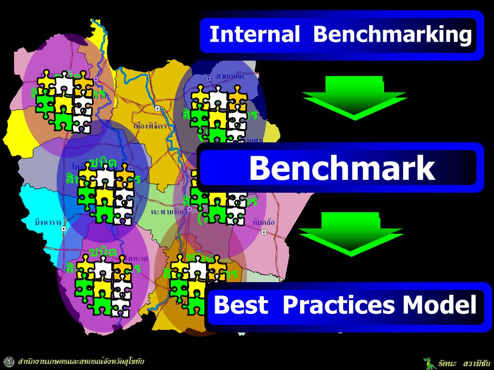 Benchmark Best Practices Model Internal Benchmarking (ข้าว) (พืชผัก)
