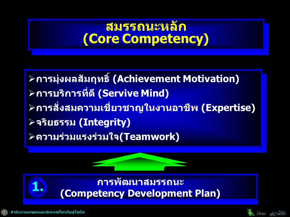 สมรรถนะหลัก (Core Competency) (Competency Development Plan)