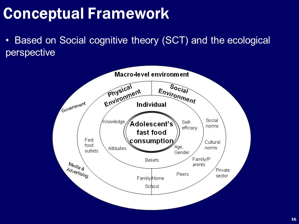 Conceptual Framework Based on Social cognitive theory (SCT) and the ecological perspective
