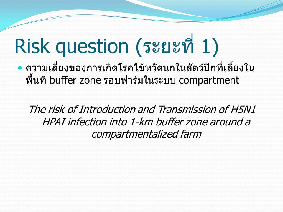 Risk question (ระยะที่ 1)