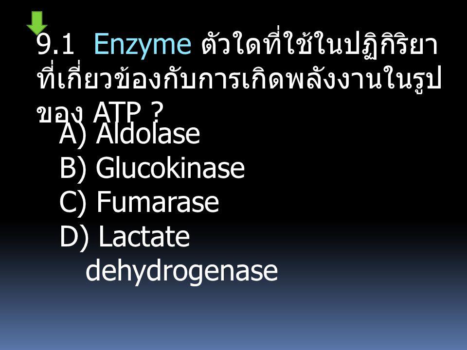 9.1 Enzyme ตัวใดที่ใช้ในปฏิกิริยาที่เกี่ยวข้องกับการเกิดพลังงานในรูปของ ATP