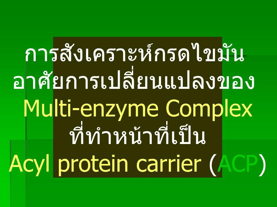 การสังเคราะห์กรดไขมัน อาศัยการเปลี่ยนแปลงของ Multi-enzyme Complex