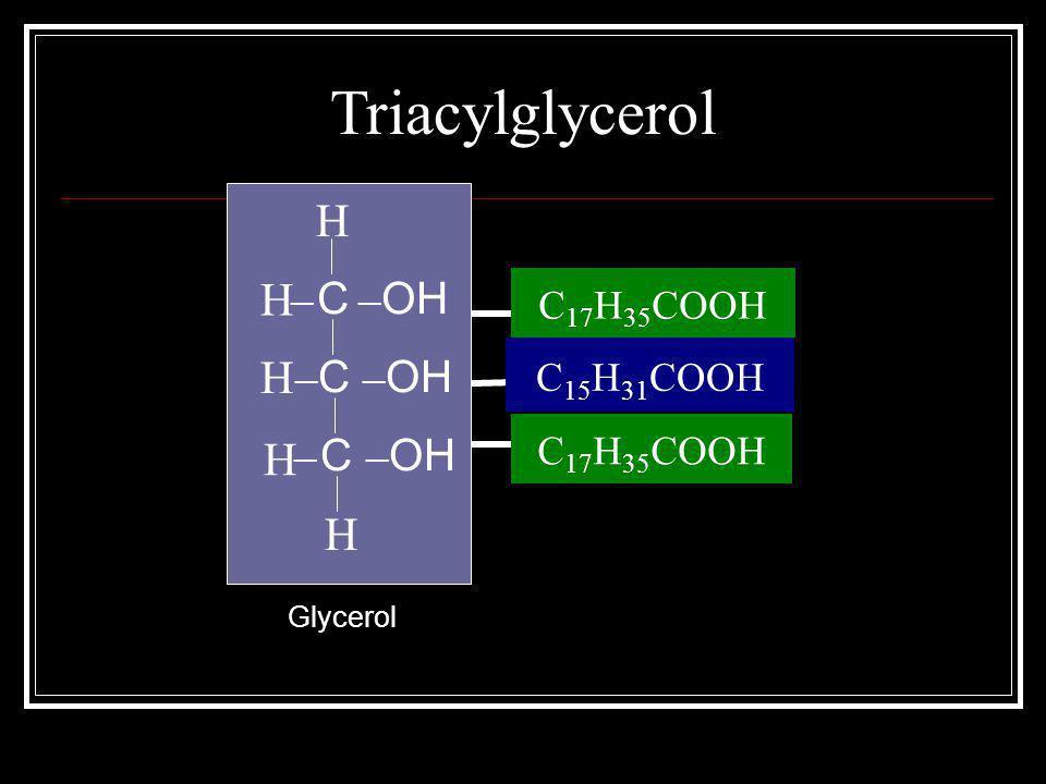 Triacylglycerol H H H H H C17H35COOH C15H31COOH C17H35COOH