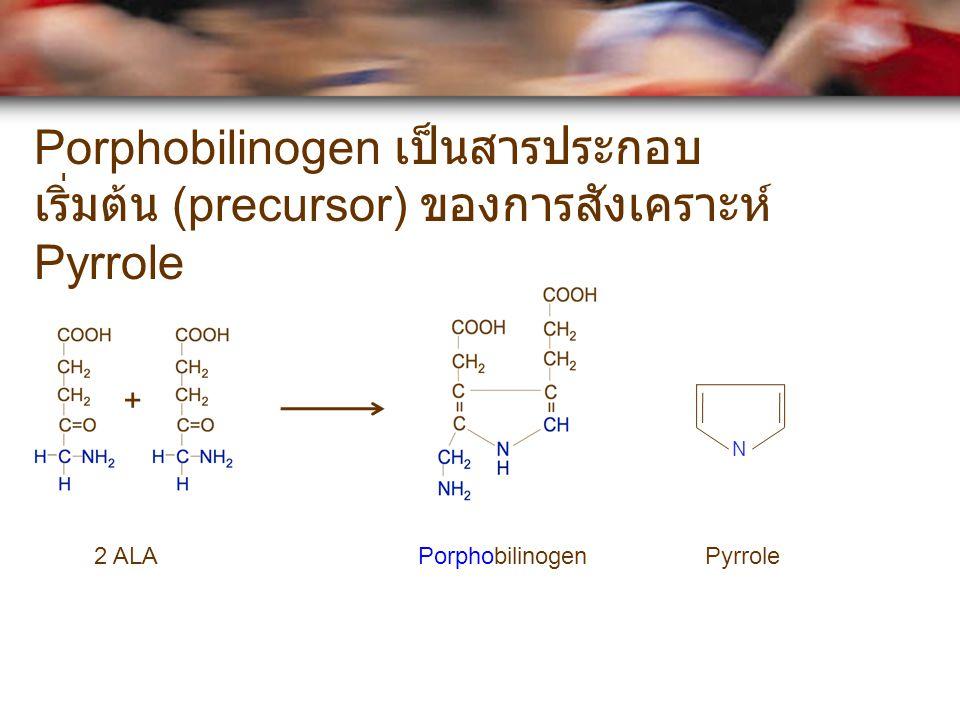 Porphobilinogen เป็นสารประกอบเริ่มต้น (precursor) ของการสังเคราะห์ Pyrrole