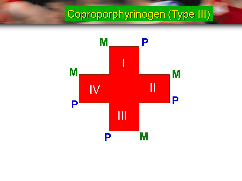 Coproporphyrinogen (Type III)