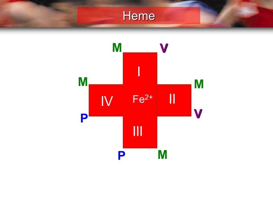 Heme M V I M M II IV Fe2+ V P III P M