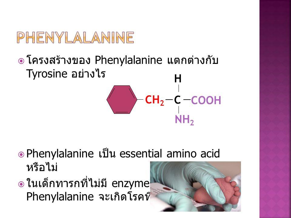 Phenylalanine โครงสร้างของ Phenylalanine แตกต่างกับ Tyrosine อย่างไร H
