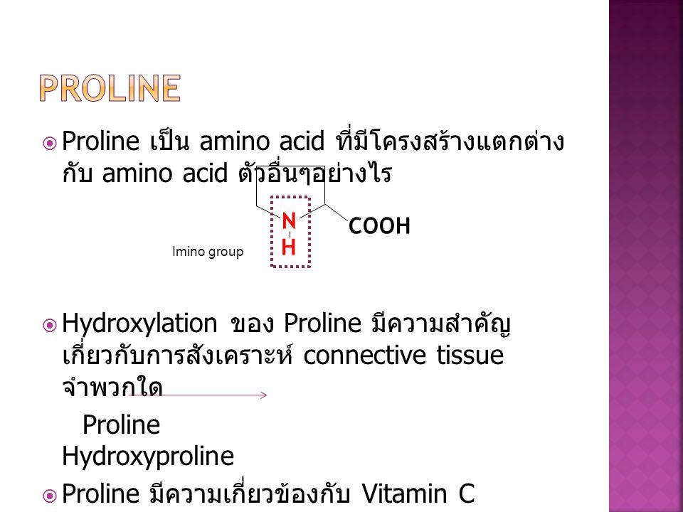 Proline Proline เป็น amino acid ที่มีโครงสร้างแตกต่างกับ amino acid ตัวอื่นๆ อย่างไร.