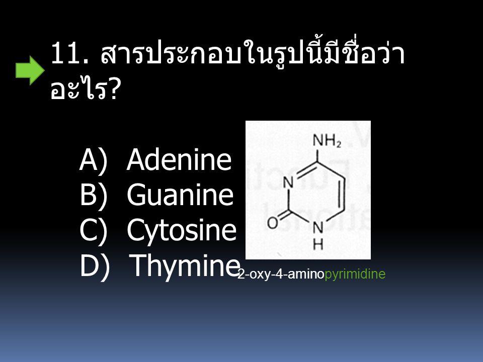 2-oxy-4-aminopyrimidine