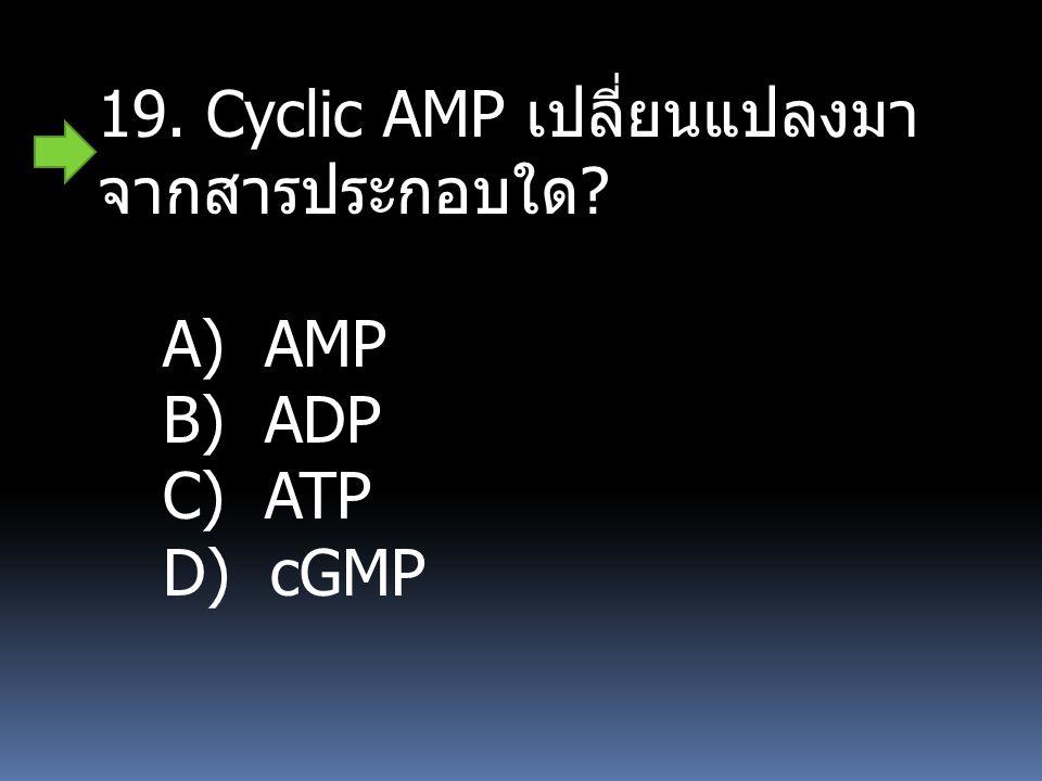 19. Cyclic AMP เปลี่ยนแปลงมาจากสารประกอบใด
