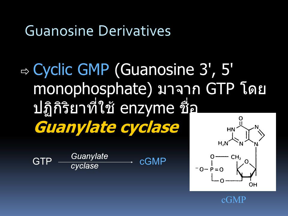 Guanosine Derivatives