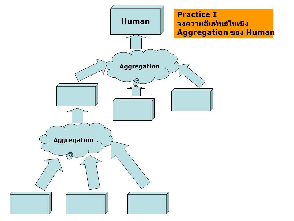 จงความสัมพันธ์ในเชิง Aggregation ของ Human