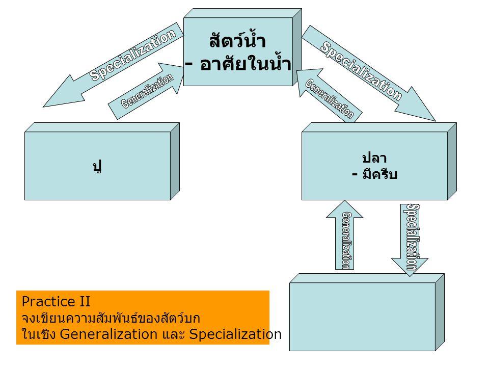 Specialization Specialization Generalization Generalization