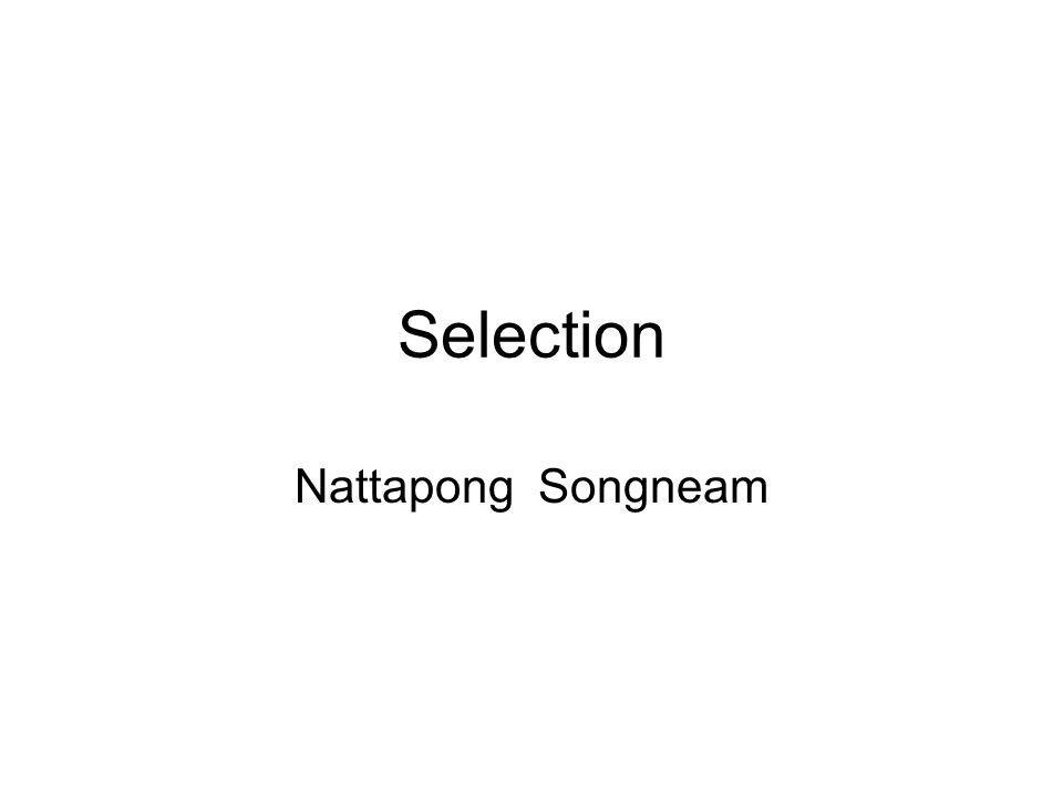 Selection Nattapong Songneam