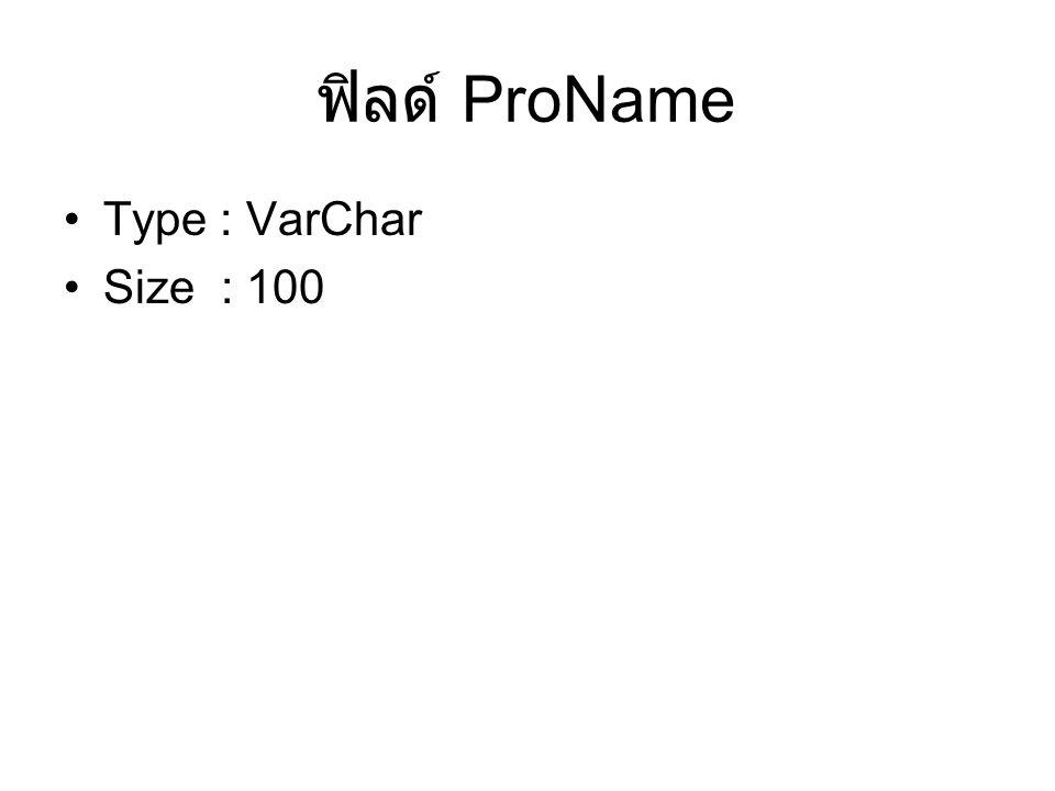 ฟิลด์ ProName Type : VarChar Size : 100