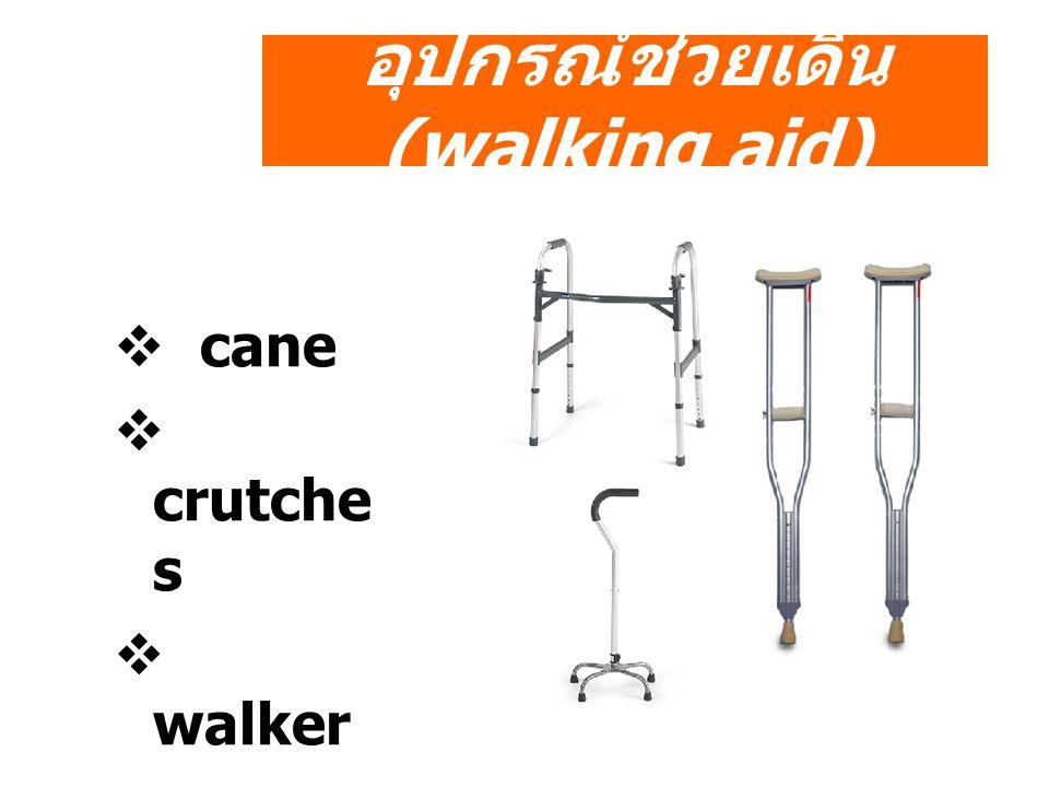 อุปกรณ์ช่วยเดิน(walking aid)