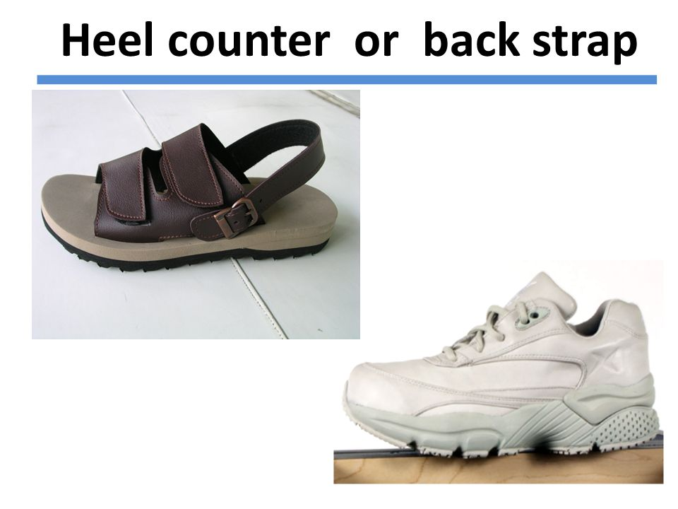 Heel counter or back strap