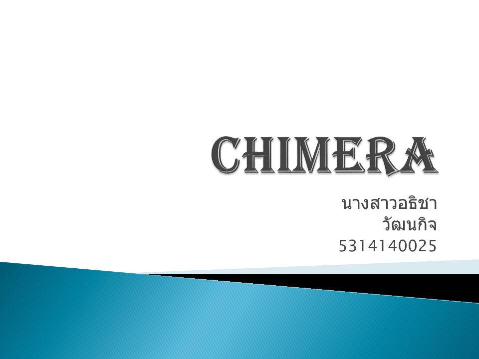 CHIMERA นางสาวอธิชา วัฒนกิจ 5314140025