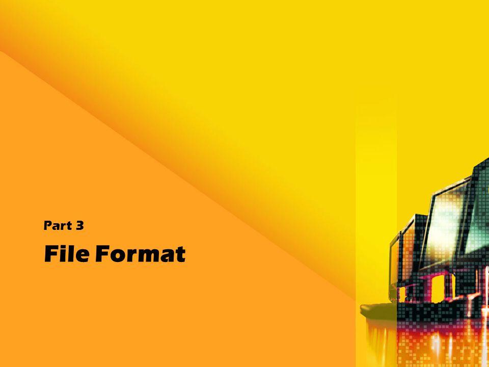 Part 3 File Format