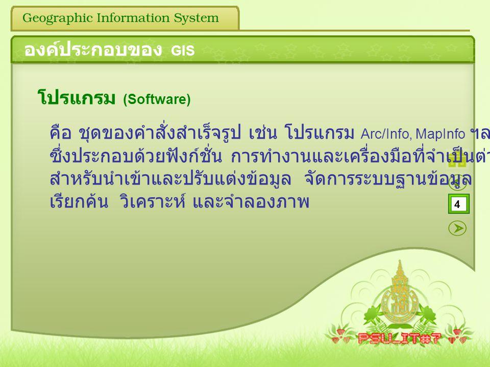 องค์ประกอบของ GIS โปรแกรม (Software)