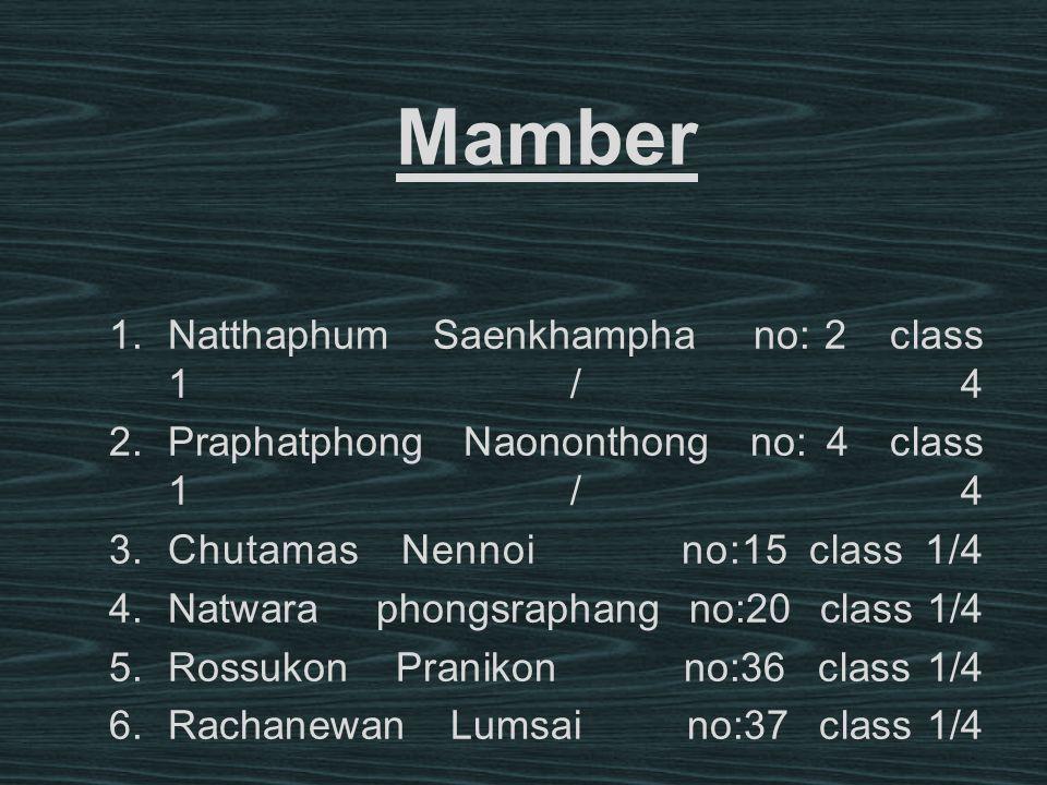 Mamber Natthaphum Saenkhampha no: 2 class 1/4
