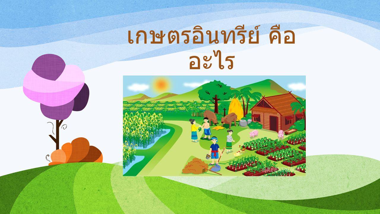 เกษตรอินทรีย์ คืออะไร
