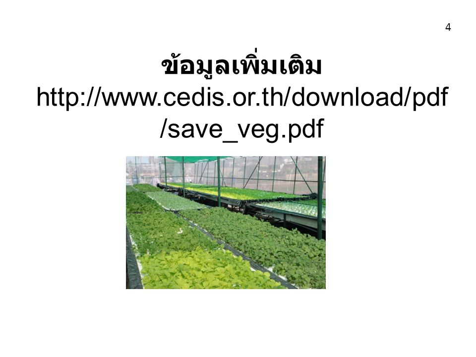 ข้อมูลเพิ่มเติม http://www.cedis.or.th/download/pdf/save_veg.pdf