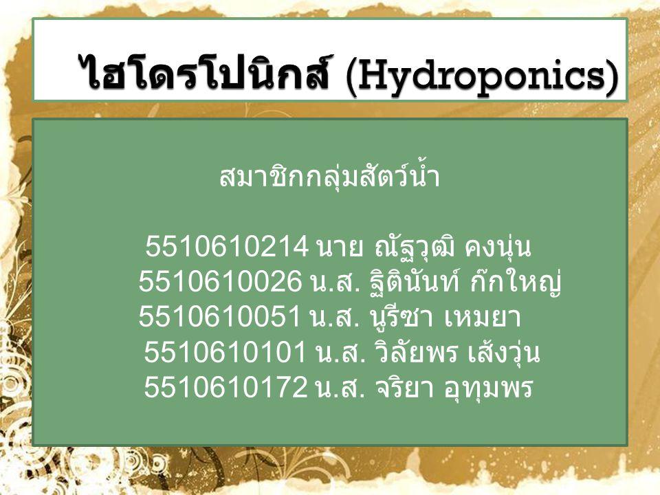 ไฮโดรโปนิกส์ (Hydroponics)
