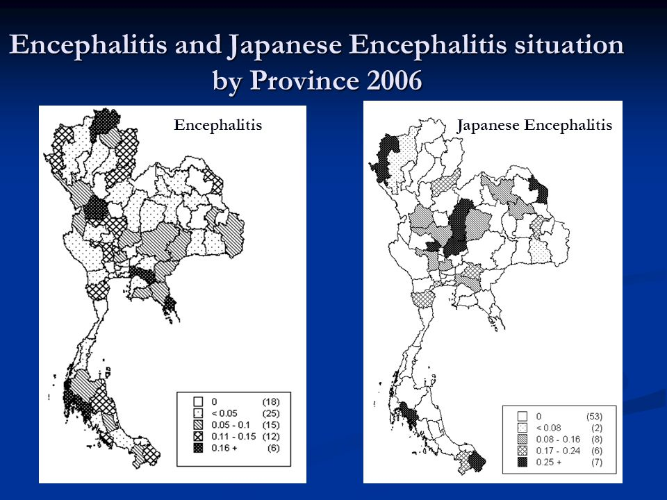 Encephalitis and Japanese Encephalitis situation by Province 2006