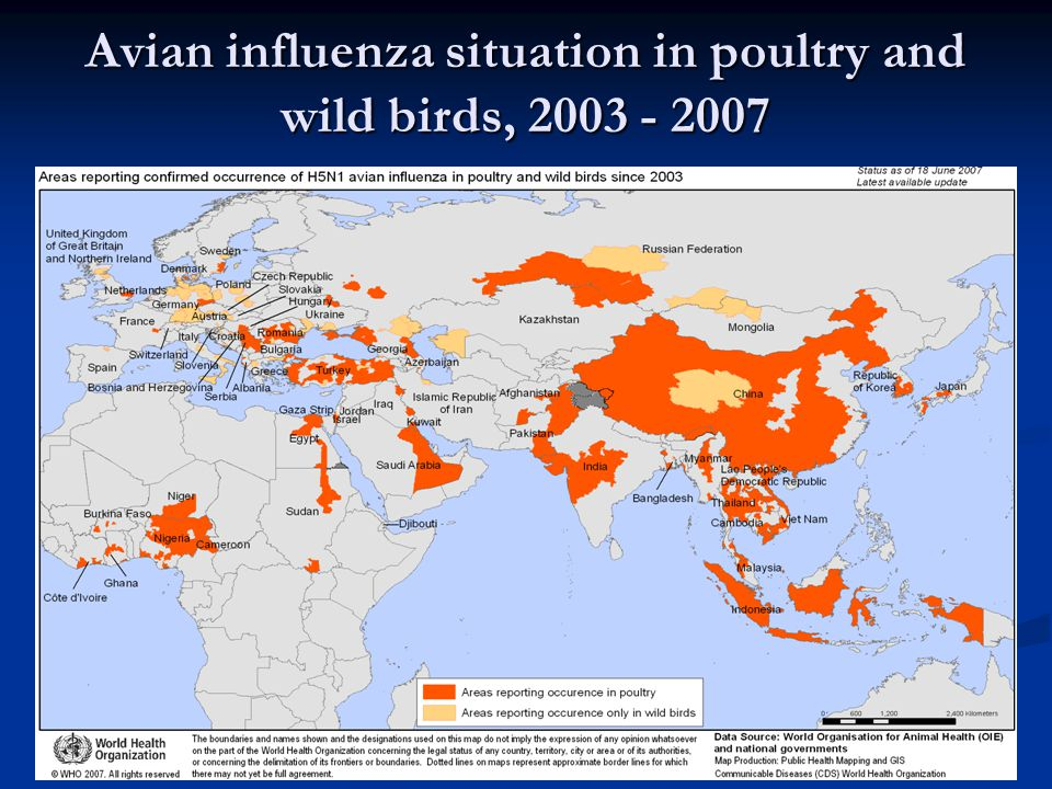 Avian influenza situation in poultry and wild birds, 2003 - 2007