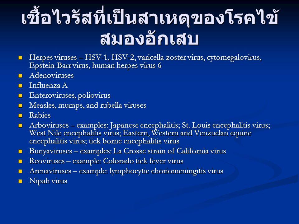 เชื้อไวรัสที่เป็นสาเหตุของโรคไข้สมองอักเสบ